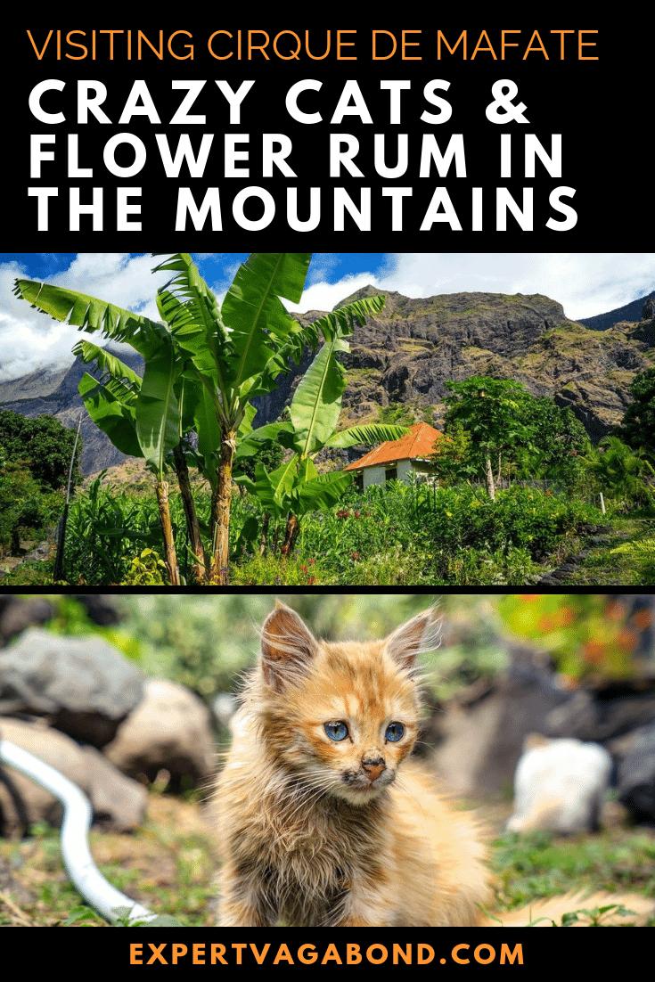 Cirque De Mafate: Crazy Cats & Flower Rum In The Mountains! More at ExpertVagabond.com