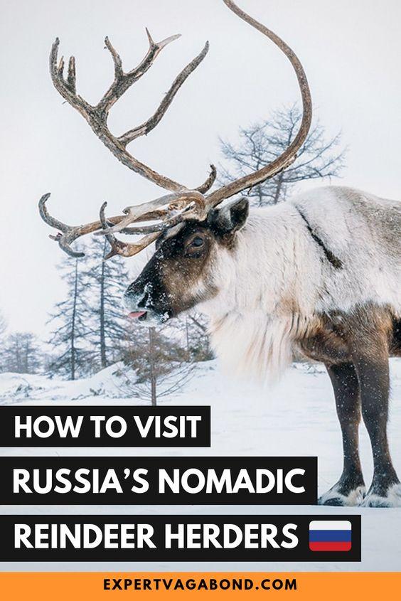 Wild Kamchatka: Visiting Russia's Nomadic Reindeer Herders. More at ExpertVagabond.com