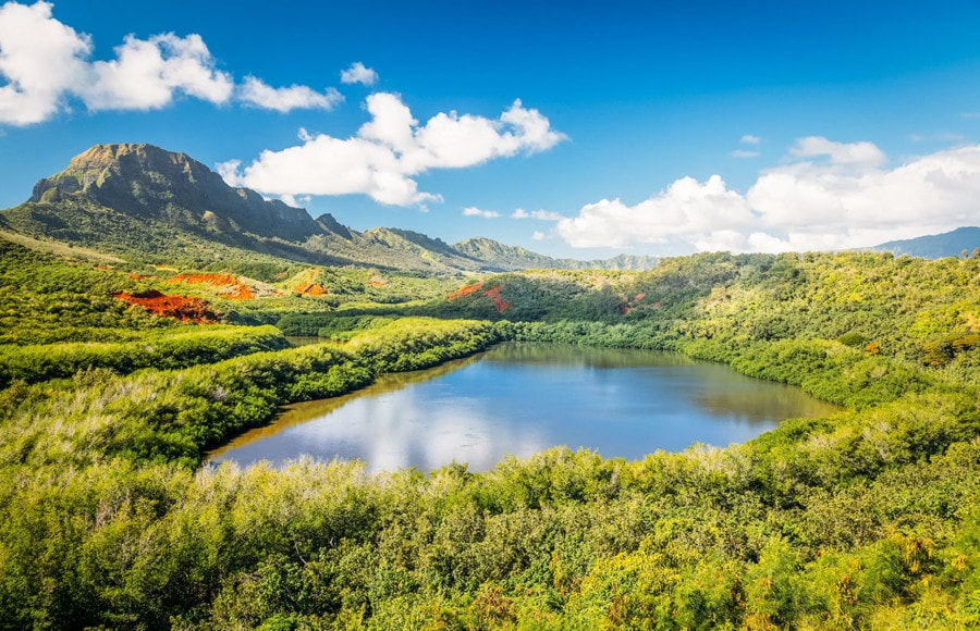 Alekoko Fishpond Kauai