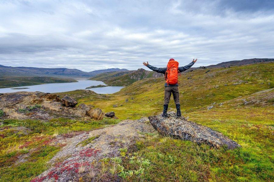 Wild Greenland
