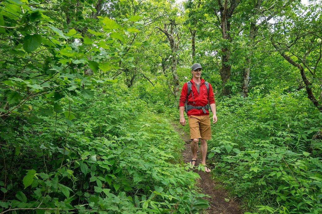 Hiking around Asheville