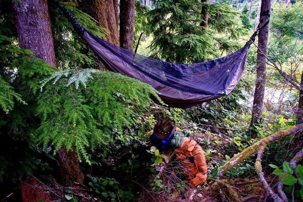 Hammock Camping Astoria Oregon