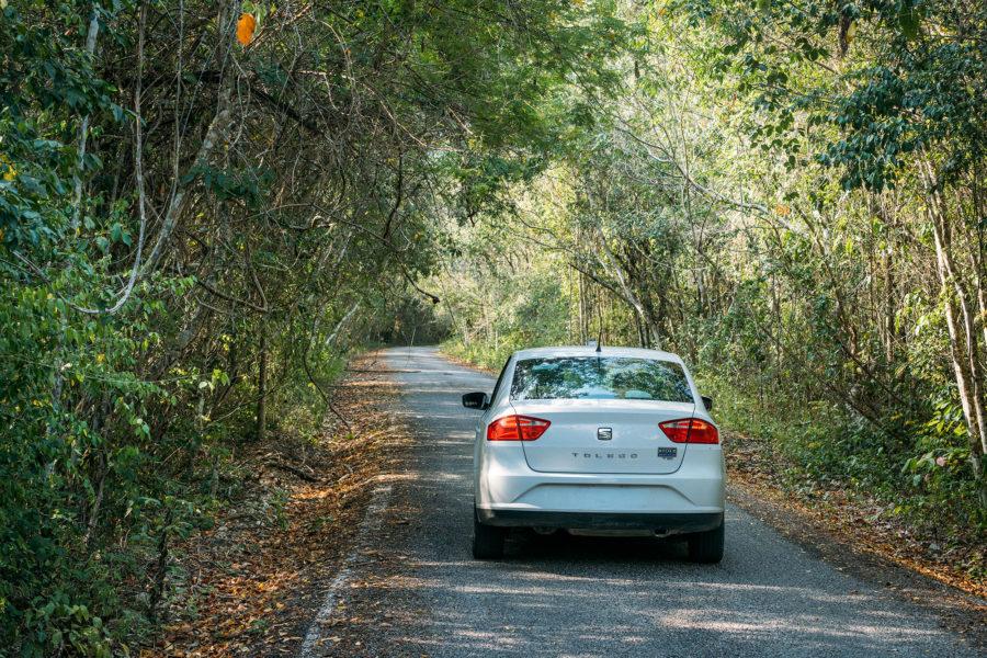 Driving to Calakmul Ruins