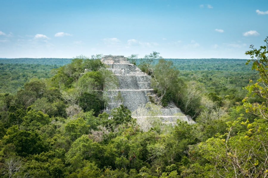 Pyramid Enveloped by Jungle