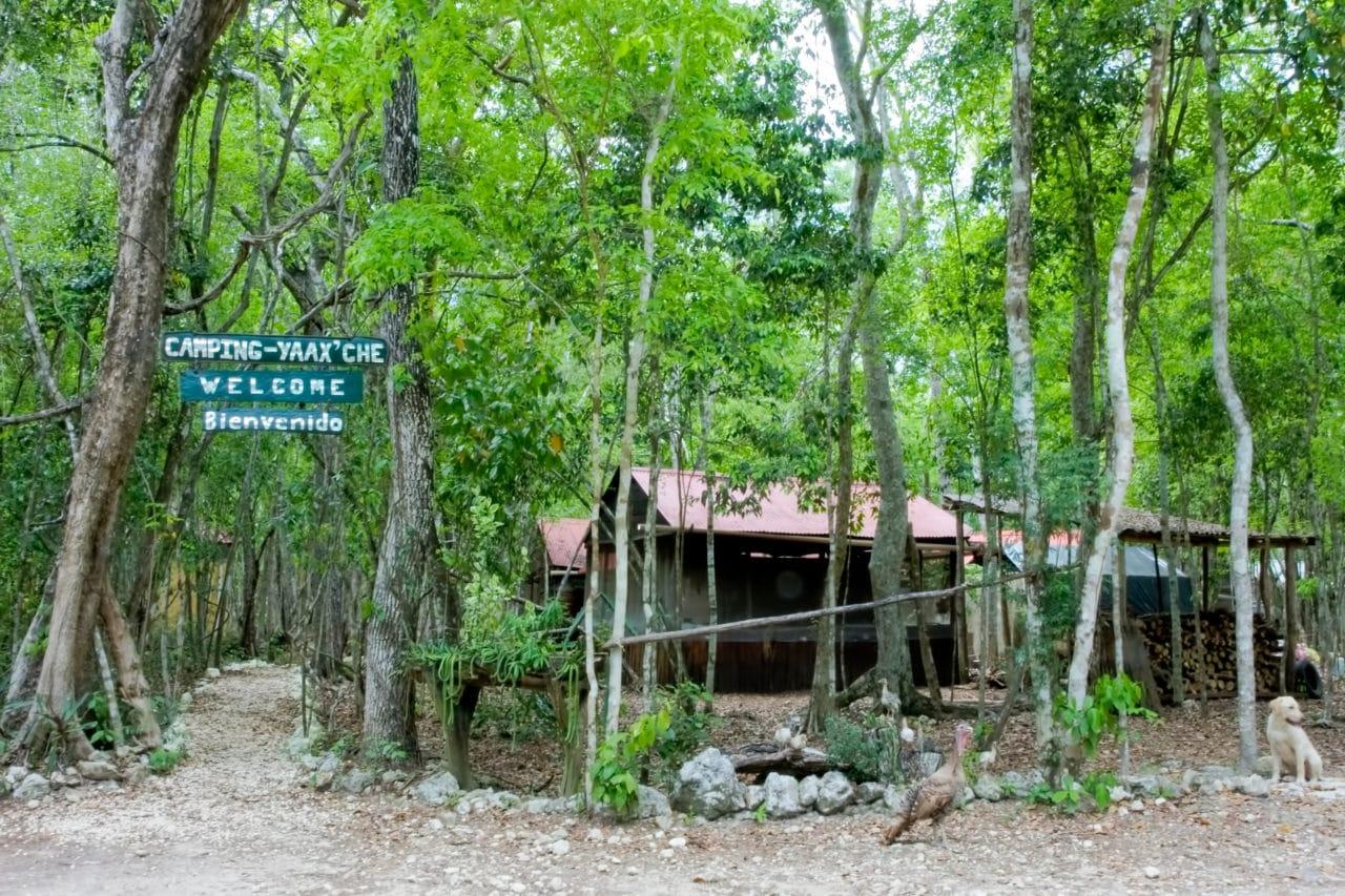 Camping at Yaax'Che Campground