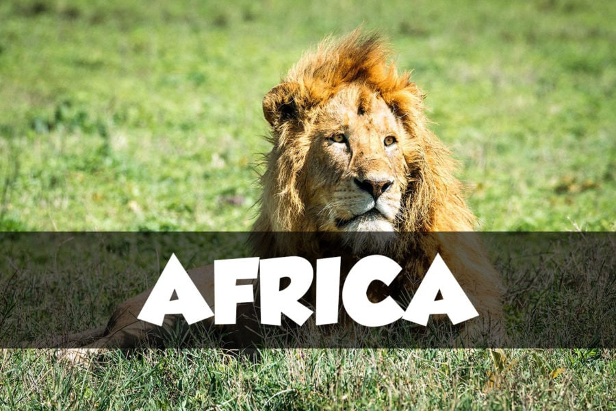 Africa Travel Articles
