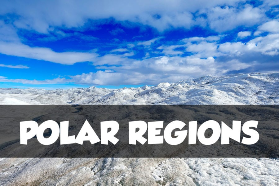 Polar Travel Articles