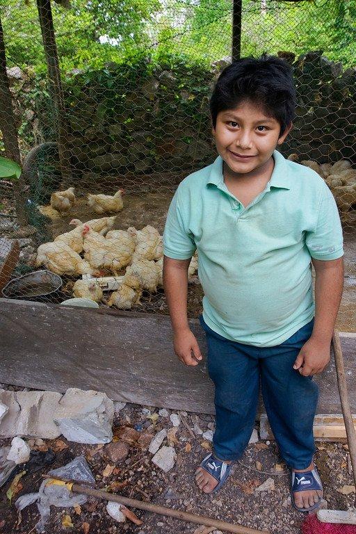 Chickens Valladolid Mexico