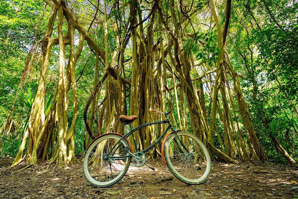 Coba Ruins Bike Rental