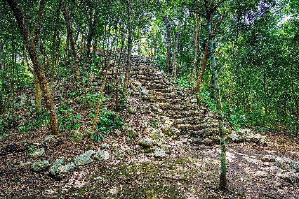 Coba Ruins Trees