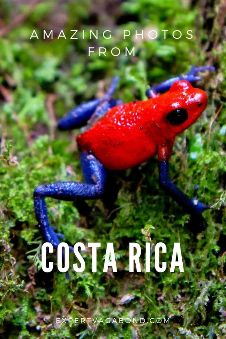 Amazing Photography From Costa Rica. More at ExpertVagabond.com