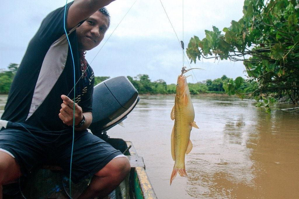 Fishing Panama