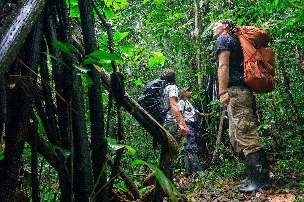 Protecting Against Tropical Disease