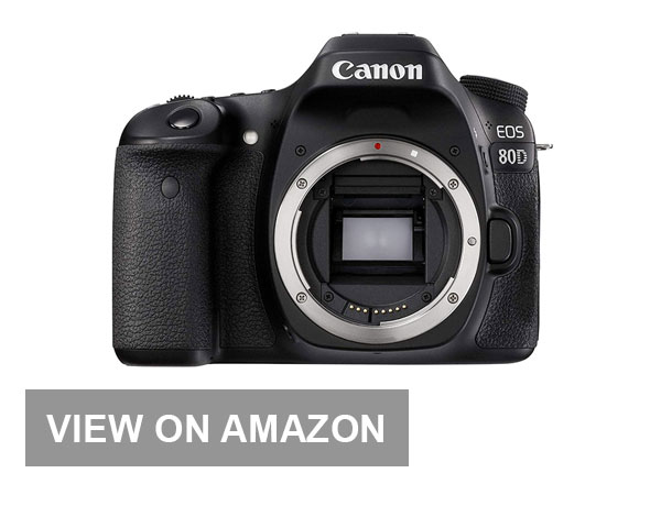 Canon 80D for Traveling