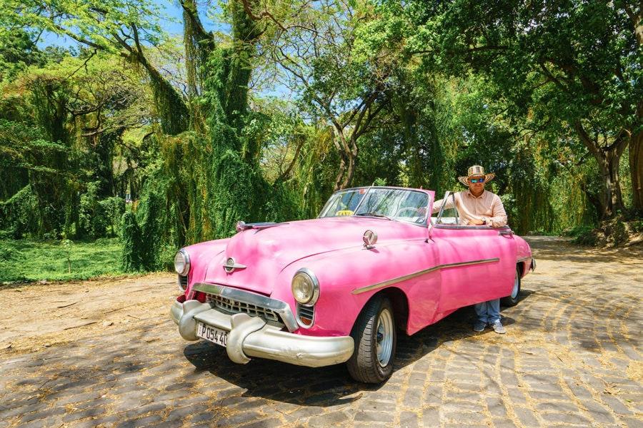 Explore Havana's Forest