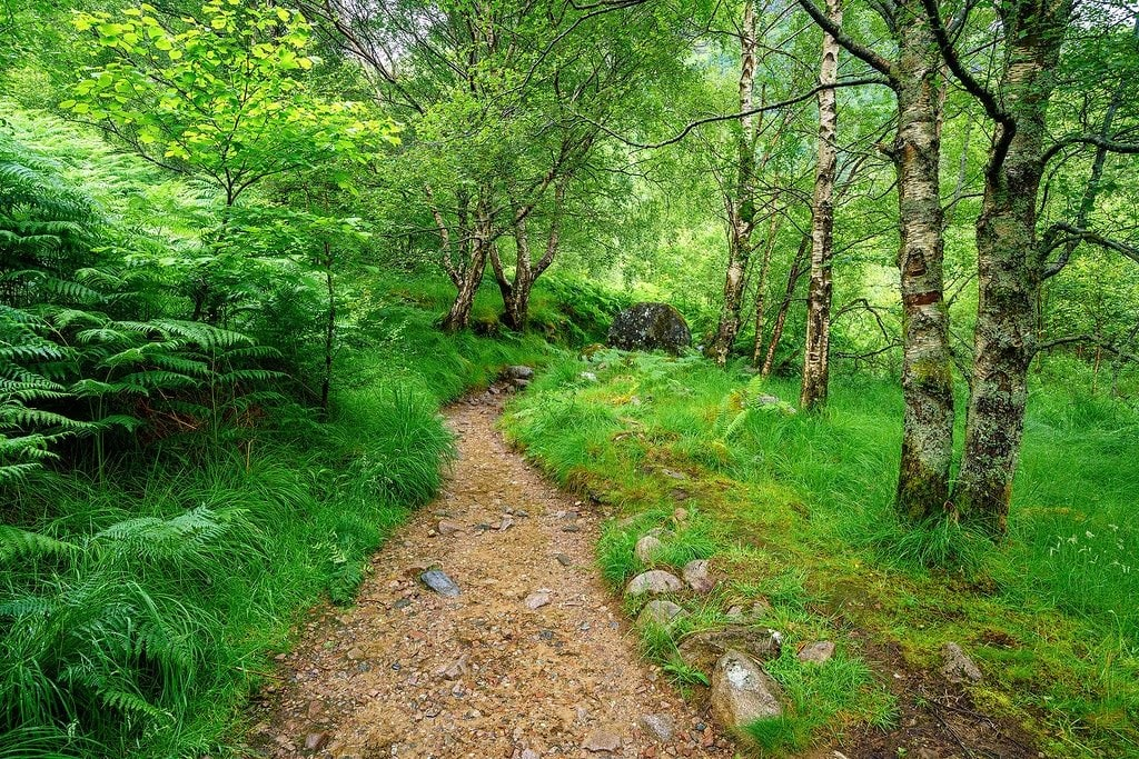 Hiking in the Scottish Highlands