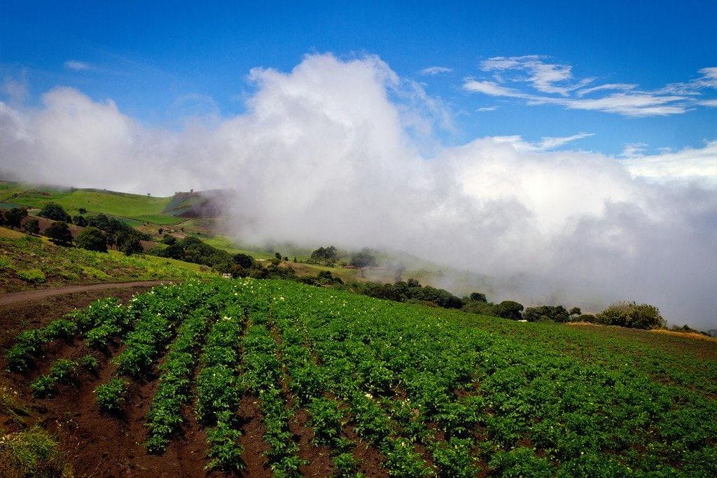 Farming Volcano Irazu Costa Rica