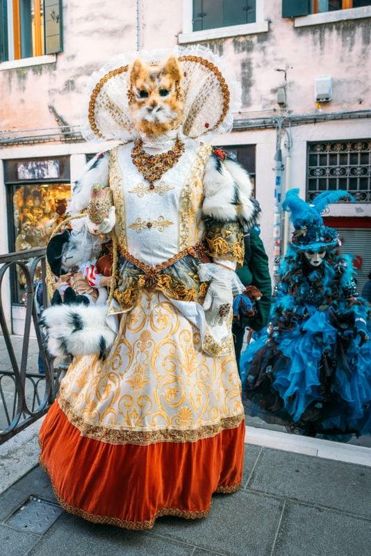 Gnaga Cat Costume