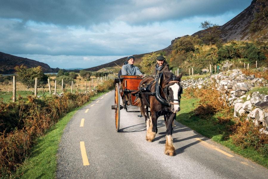 Jaunting Horse Rides