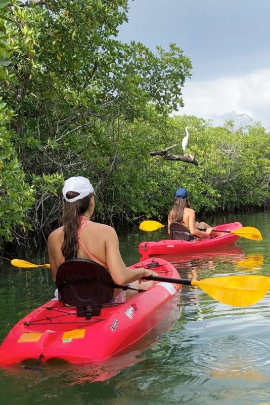 Kayaking Trips in Cancun