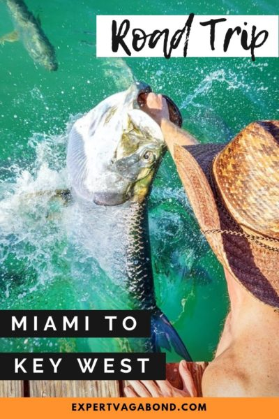 Miami to key west road trip. Discover the best tips and advice here! #Miami #Keywest #Roadtrip