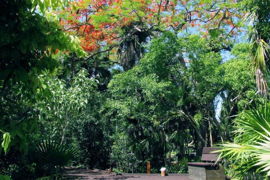 Key West Botanical Gardens