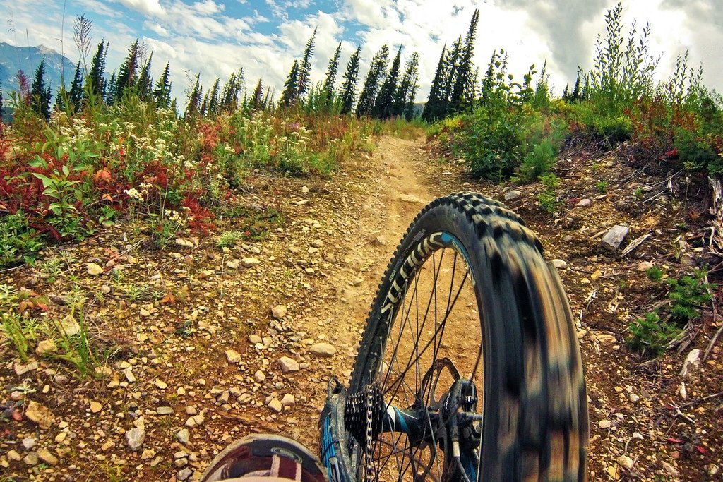 Mountain Bike Trails Kicking Horse