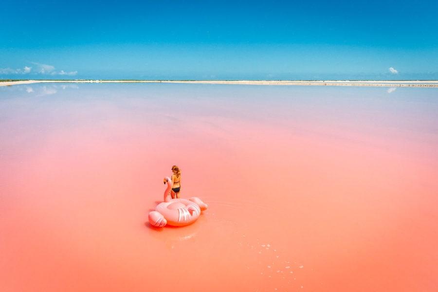 Las Coloradas Pink Lakes Flamingo