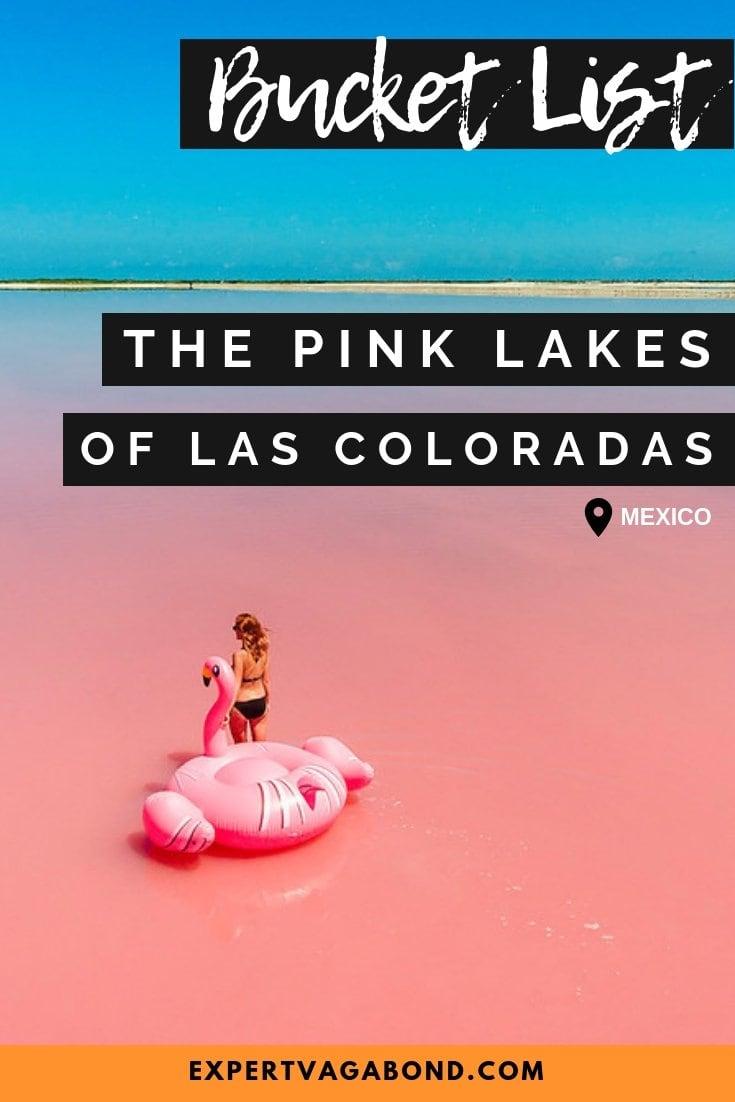 Visiting the pink lakes of Las Coloradas in Mexico. More at ExpertVagabond.com