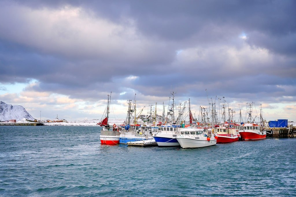 Lofoten Islands Fishing