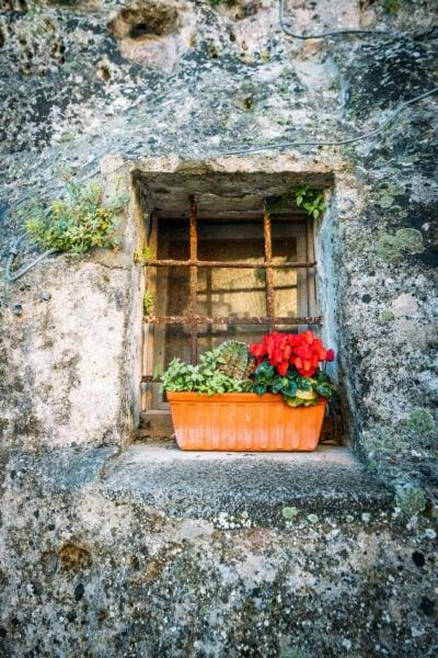 Caja de flores con ventana