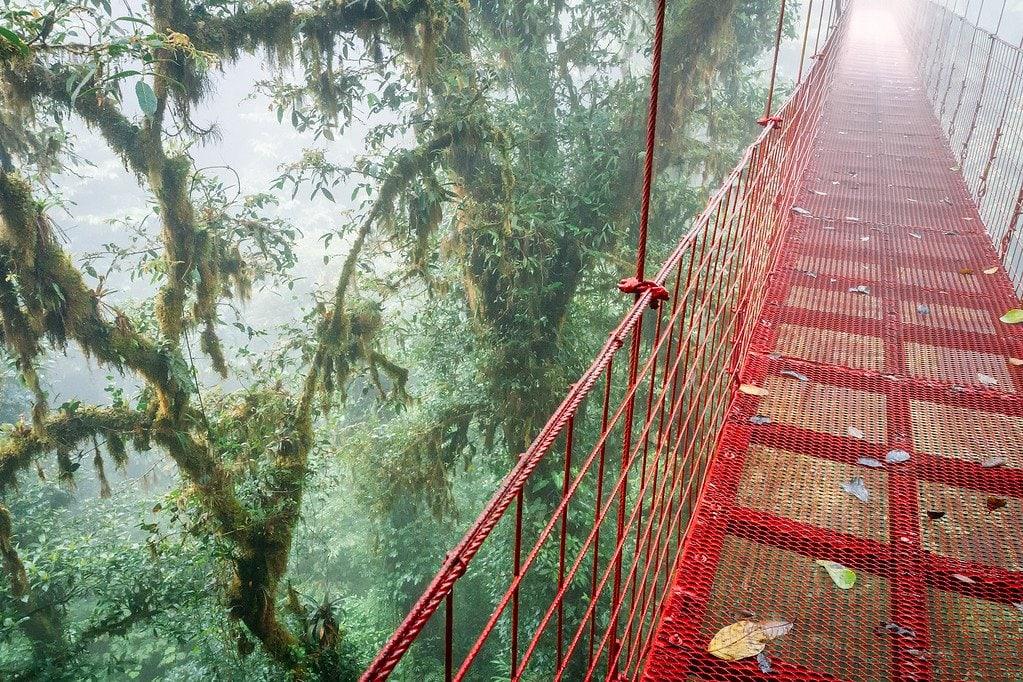 Monteverde Canopy Bridge