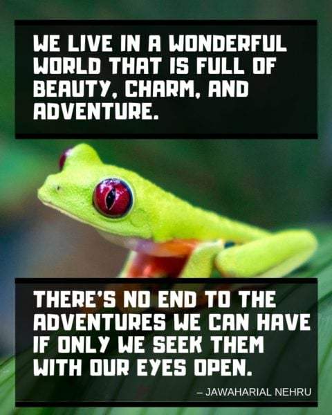 Best Travel Quotes 75 Inspirational Quotes On Traveling Ultimate List