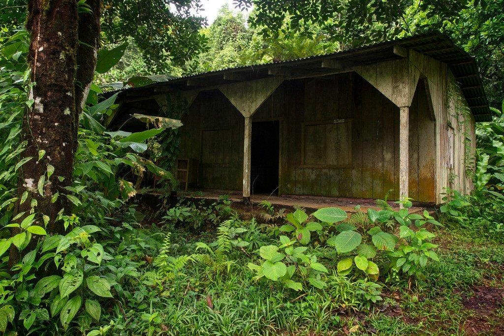 Chocolate Farm in Costa Rica