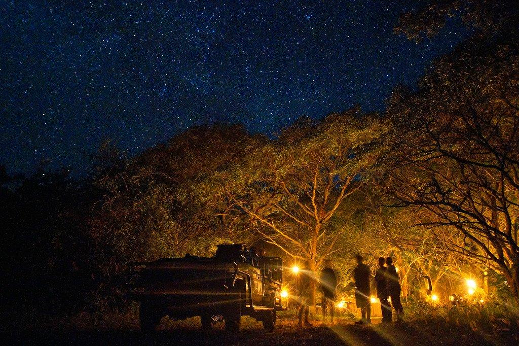 Night Safari South Africa