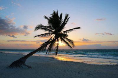 23 Fun Things To Do In Playa Del Carmen (Mexico's Riviera Maya!)