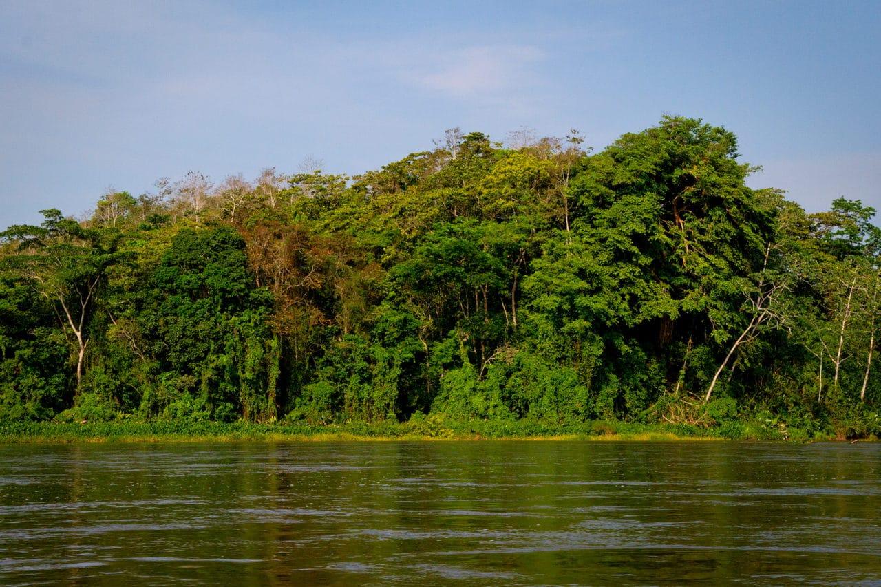 Rio San Juan Nicaragua Jungle