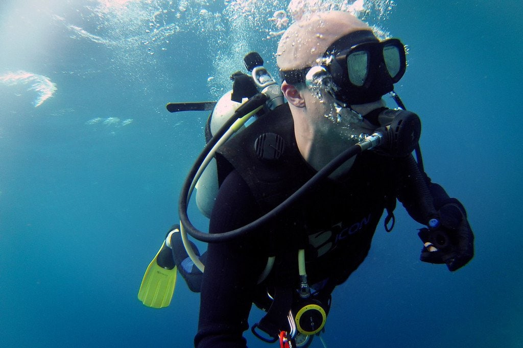 Shark Diving in Fiji