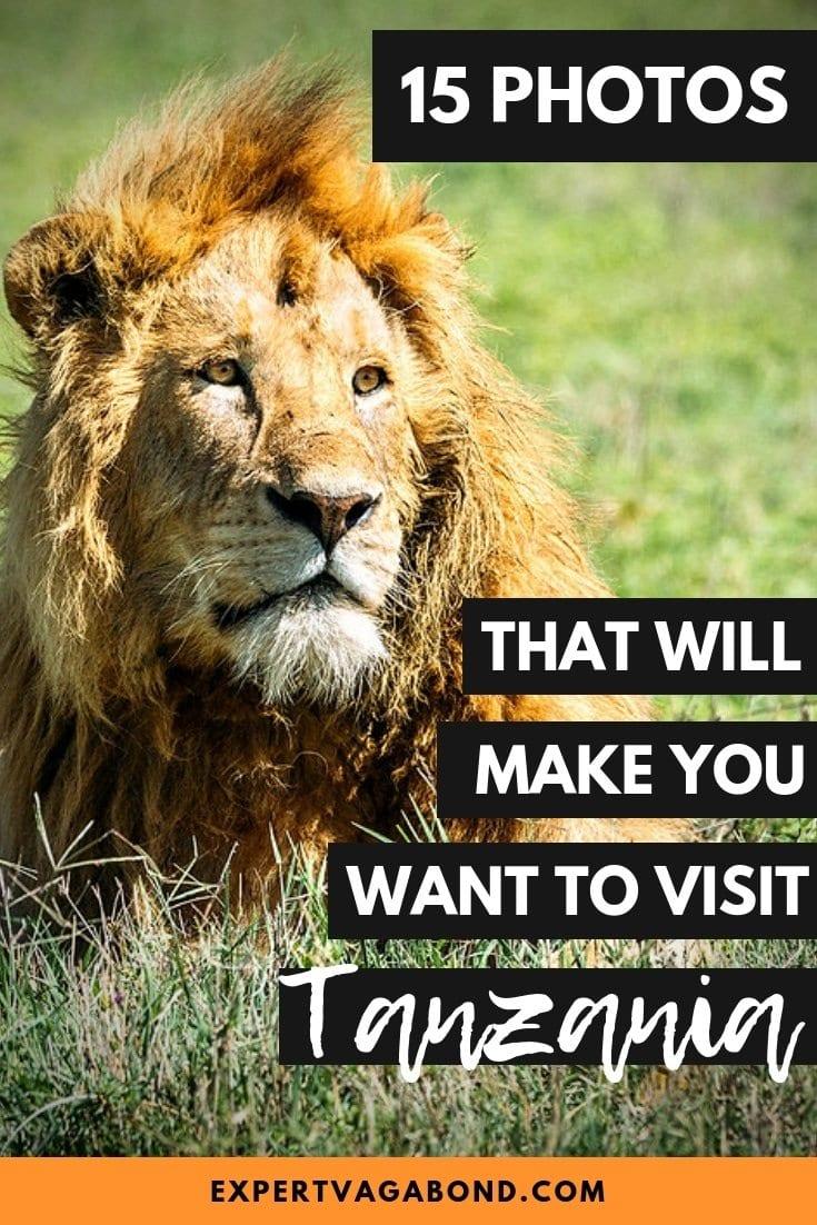 15 Photos That Will Make You Want To Visit Tanzania. More at ExpertVagabond.com