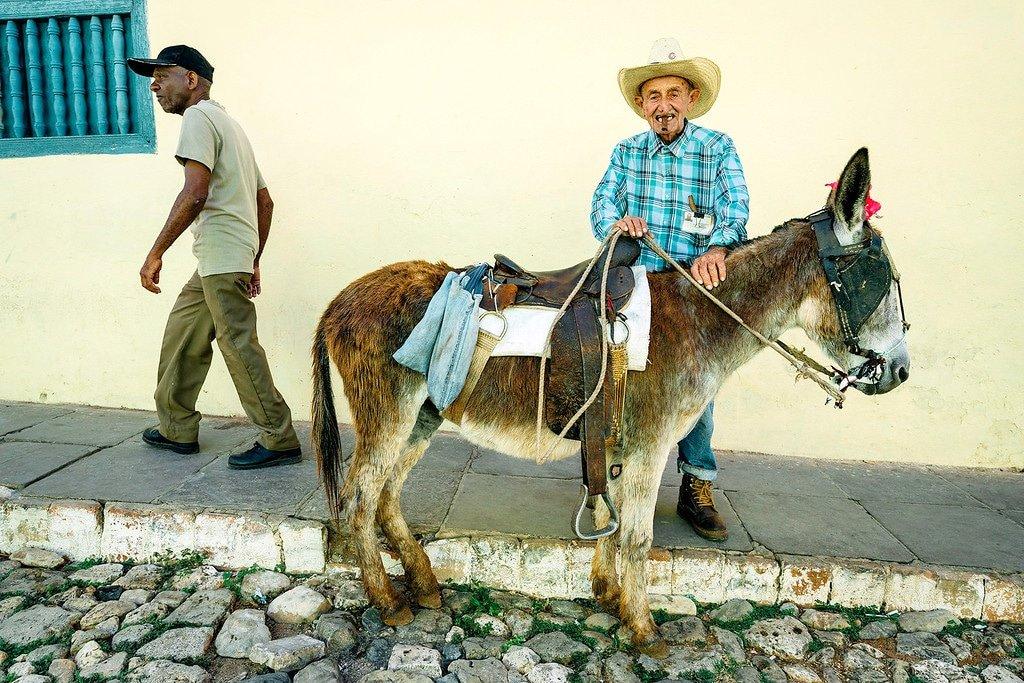 Trinidad Donkey Man